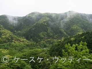 Ⓒ 縮小 ブ 2017年5月9日  長崎県 対馬(地形と自然).jpg