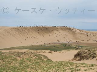 ブ●縮小 2017年5月5日 砂丘とオアシス.jpg