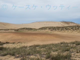 ブ●縮小 2017年5月5日 鳥取砂丘 火山灰露出地.jpg