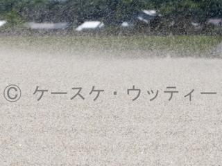 ブ トリミング 縮小 2017年5月4日 風紋を作る風.jpg
