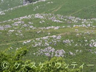 縮小 ブ 2017年5月7日  カルスト台地.jpg