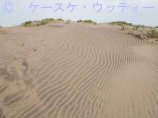 縮小 ブ 2017年6月6日  風紋.jpg